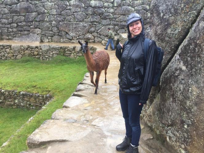 Pérou Titicaca-Machu Picchu - 259