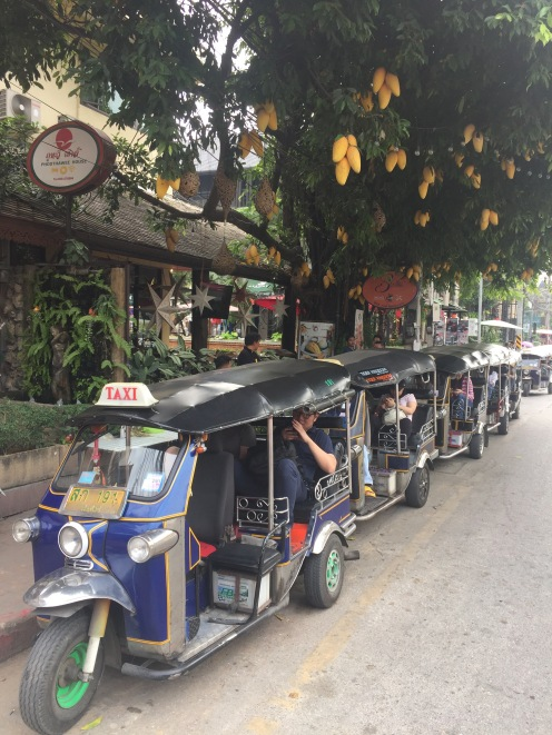 Thaïlande - 222